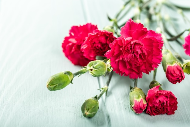 Bouquet of pink carnation on light turquoise wooden surface. greeting card with copy space
