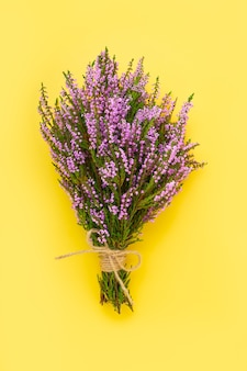 A bouquet of pink common heather flowers on a bright yellow background copy space top view flat lay