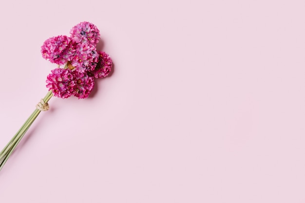 Bouquet of pink flowers on pink background, copy space.