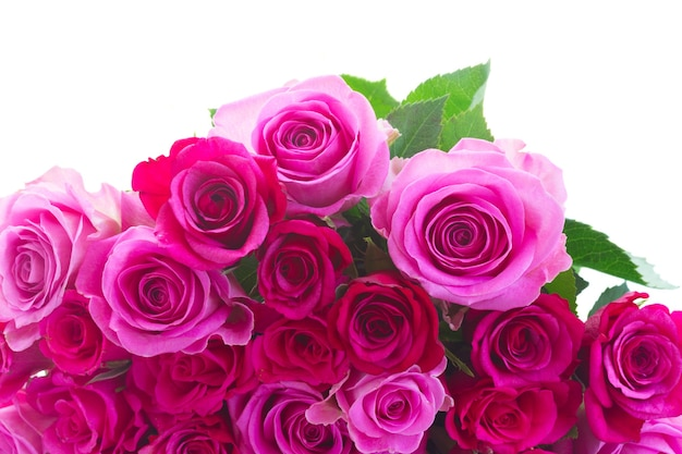 Bouquet of pink and magenta roses border isolated on white background Premium Photo