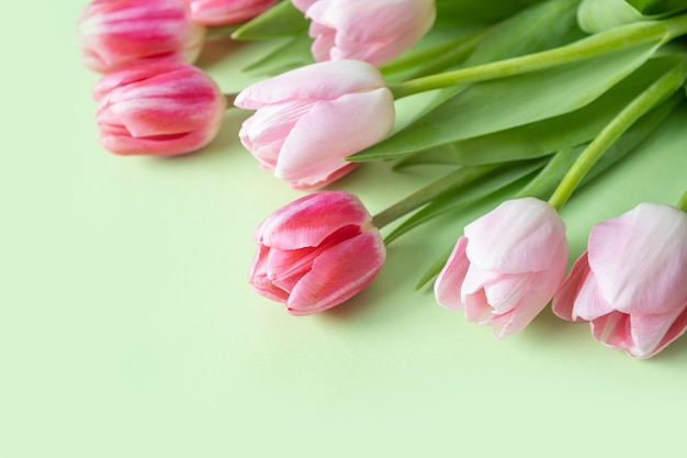 Bouquet of pink tulips on green surface