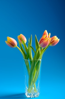 Bouquet of pink tulips in a vase