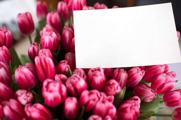 Bouquet of pink tulips with a note. greeting card to women's day.