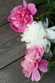 A bouquet of pink and white blooming peony flower on the surface of the old boards with texture