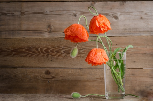 Bouquet of poppies in glass vase isolated on wooden table