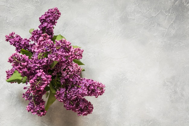 Bouquet of purple lilacs on light table