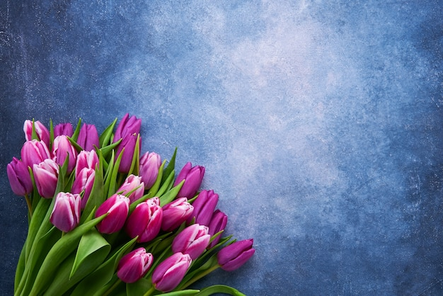 Bouquet of purple tulips on a bright blue wall. flat lay, copy space for text