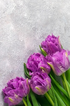 Bouquet of purple tulips on gray textured background