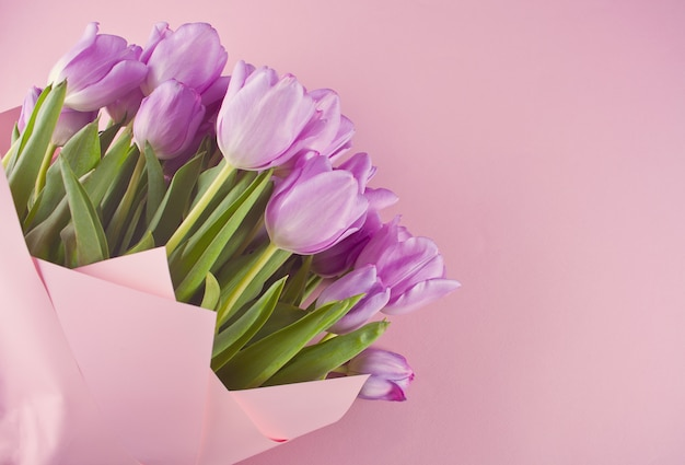 Bouquet of purple tulips on the pink background. copy space.
