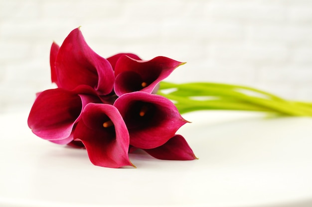 Bouquet of red callas on the table