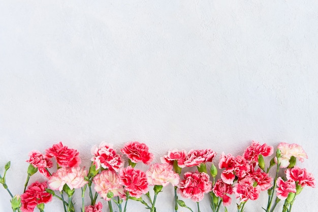 Bouquet of red carnation flowers on light background mothers day valentines day birthday celebration