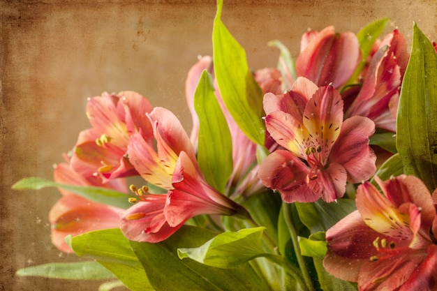 Bouquet of red lily