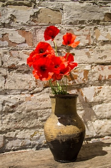Bouquet of red poppies in clay jug on rustic wooden table against old brick wall