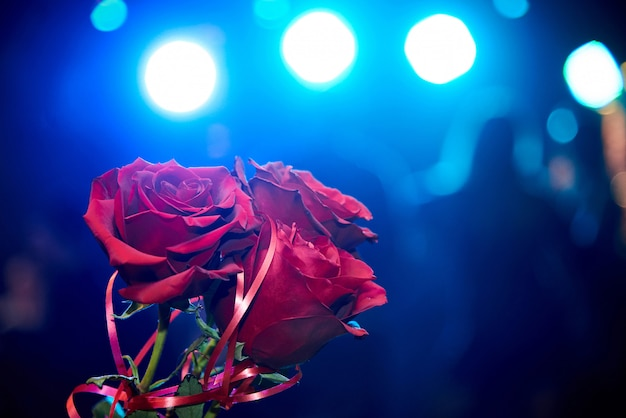 Bouquet of red roses in the backlight on a dark background with a bokeh