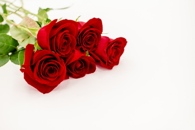 Bouquet of red  roses with a red ribbon