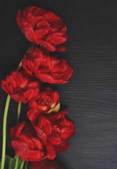 Bouquet of red tulips on a black surface