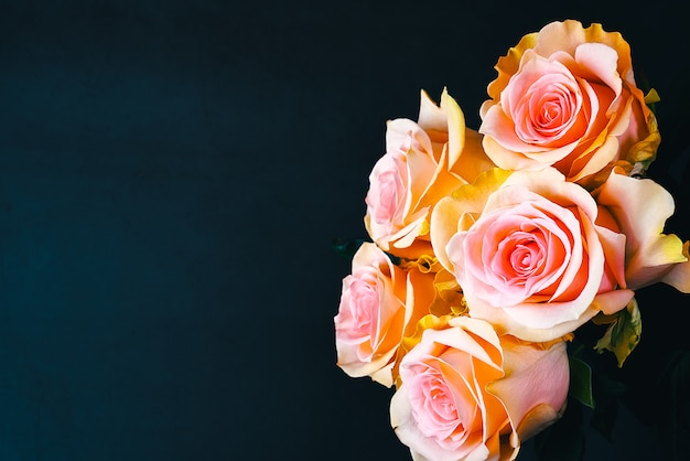 A bouquet of roses beautiful, fresh, bright on a dark blue background.