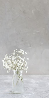 Bouquet of small white flowers in a jar on a grey background