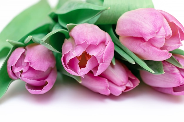 Bouquet of spring flowers, pink tulips on white background close up