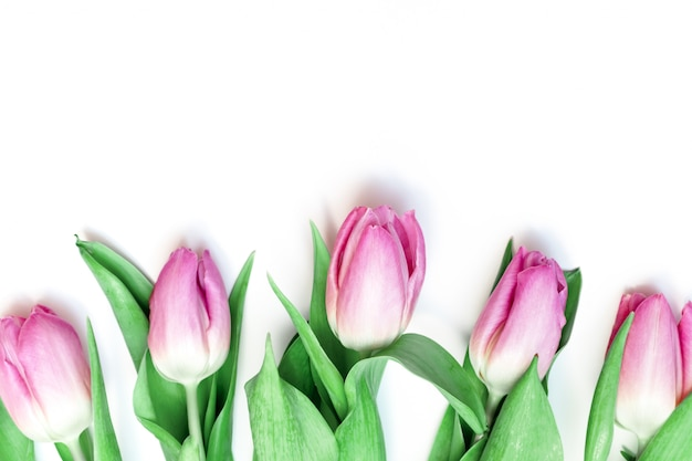 Bouquet of spring flowers, pink tulips on white background with copy space