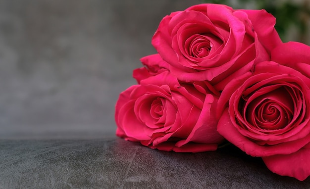 A bouquet of three red roses on a gray with a place for text