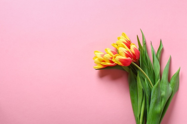 A bouquet of tulips as a gift for march  mothers day valentines day easter decor