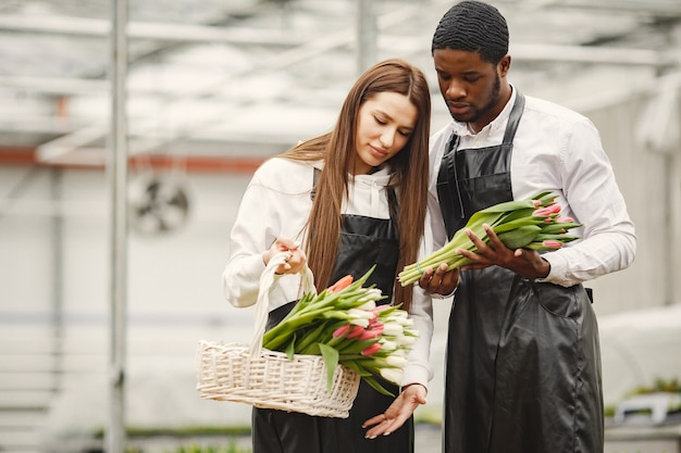 Bouquet of tulips in a guy. guy and girl in a greenhouse. g.ardeners in aprons.
