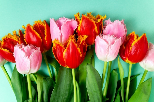 Bouquet of tulips spring flowers on color festive background