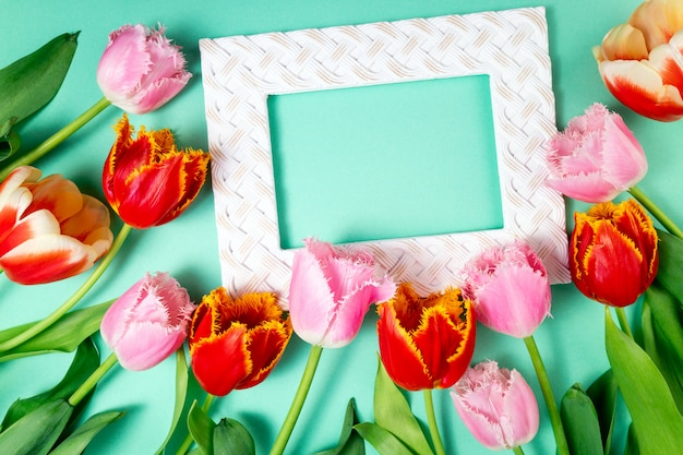 Bouquet of tulips spring flowers and frame on color festive background