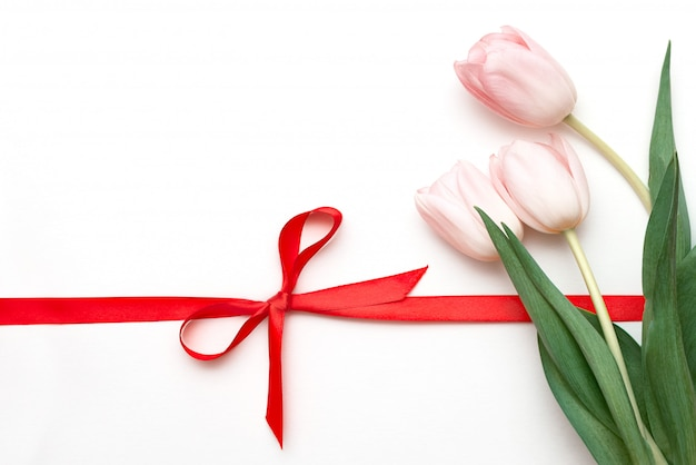Bouquet of tulips on white background with red ribbon tied in bow