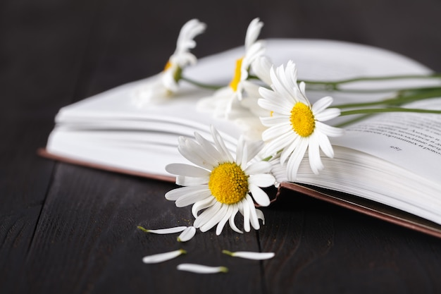 Bouquet of white daisies on old book