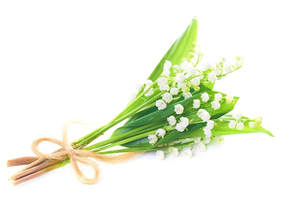 Bouquet of white flowers lilies of the valley isolated on white background