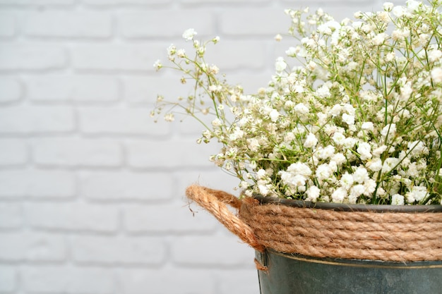 Bouquet of white gypsophila, baby's breath flowers close up