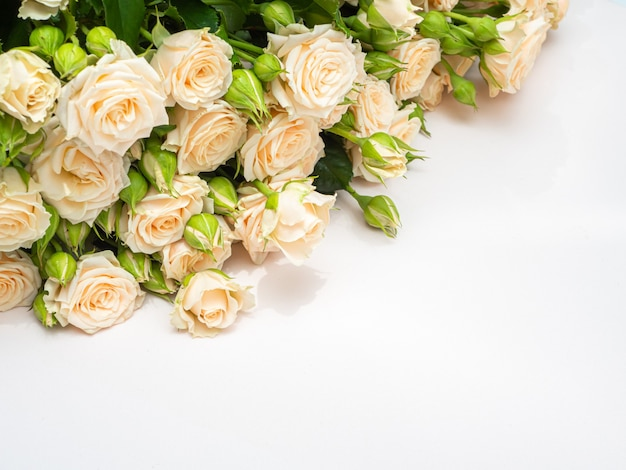 Bouquet of white roses copy space