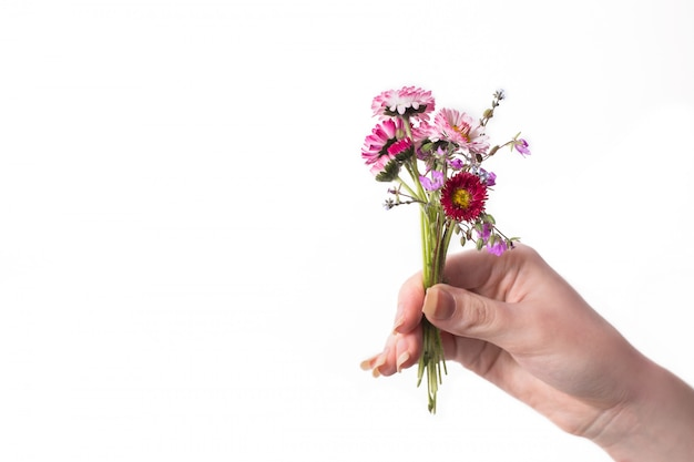 Bouquet of wild flowers isolated on white background. space for text