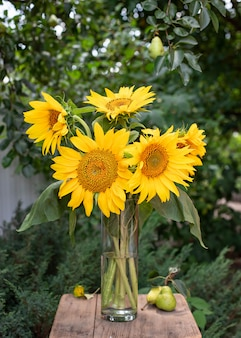Bouquet of yellow sunflowers in a vase