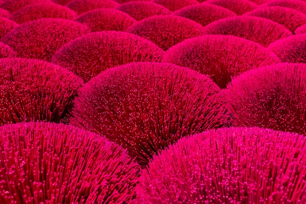 Bouquets of red incense dry in the sun in a field