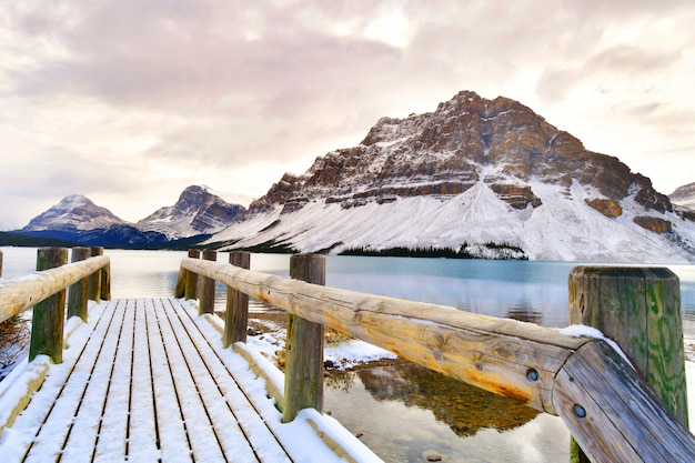 Bow lake、ロッキー山脈、バンフ、アルバータ、カナダ