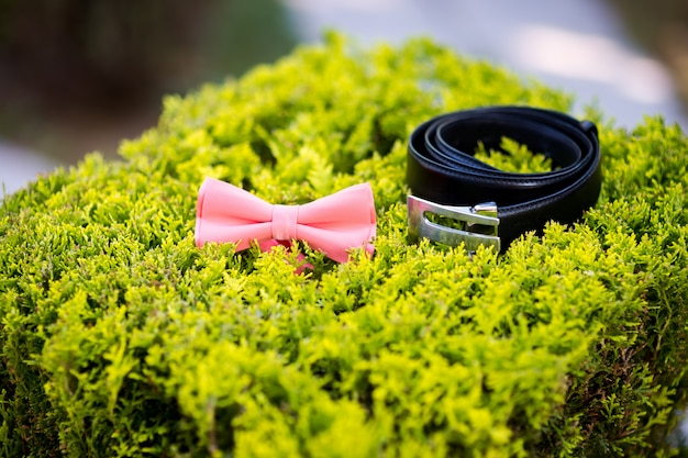 Bow tie and belt. wedding groom accessories. details of clothes.