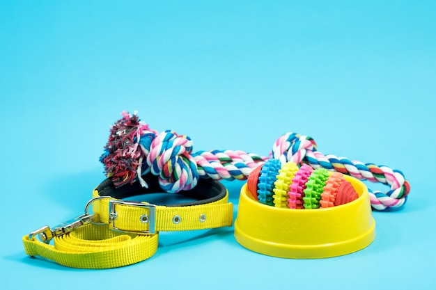 Bowl, collar with toy rope and bite rope for blue background