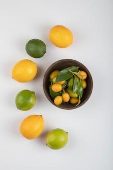 Ciotola di kumquat freschi, lime e limoni su bianco.