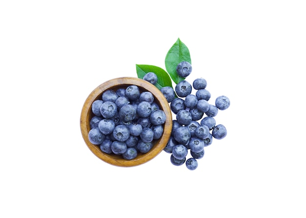 Bowl of fresh organic blueberries with leaves isolated white background
