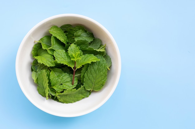 Bowl of mint leaves on blue table. copy space