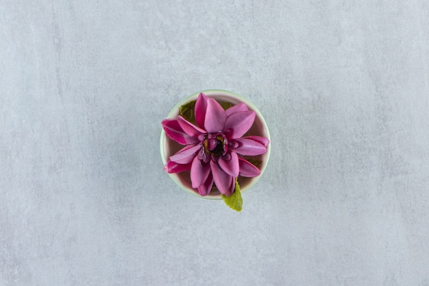 Una ciotola di fiori viola, sul tavolo bianco.