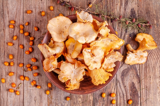 Bowl with chanterelle mushrooms on wood