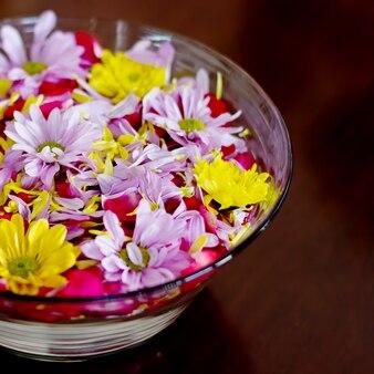 Bowl with chrysanthemum flowers