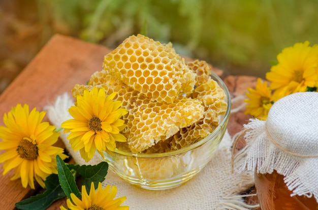 Bowl with fresh honeycombs and honey.  organic natural ingredients
