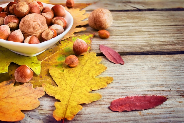Bowl with nuts on the background and autumn leaves