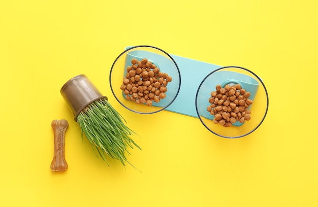 Bowls with dry pet food and chew bone on color background