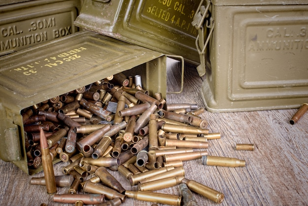 Box of ammunition with empty cartridges